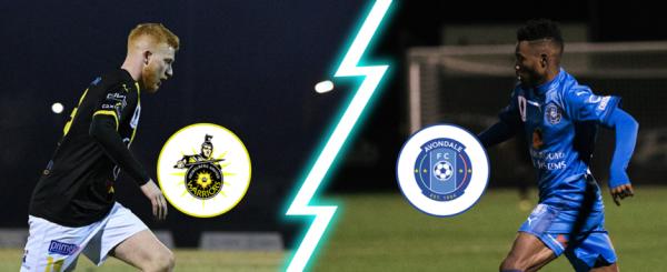 MATCH PREVIEW: Heidelberg United v Avondale FC [NPL Men's Final]
