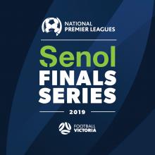 Senol Partners NPL